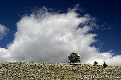 las-nubes-se-levantan-sobre-los-campos-de-montana-772460